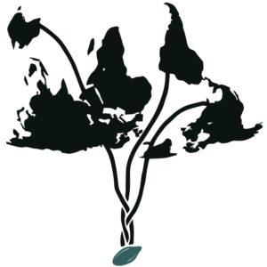 COT Logo-min